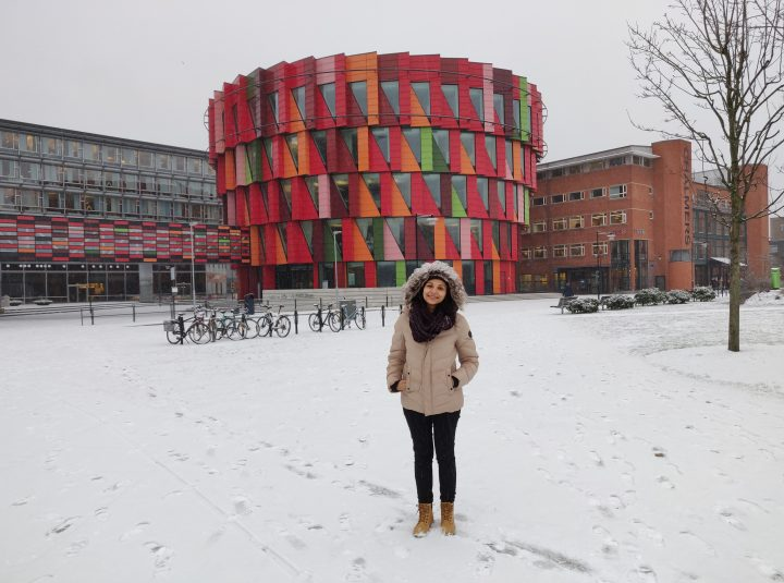 ESR 9 Shereen Abouelazayem, Secondment at Chalmers, Jan. 2019
